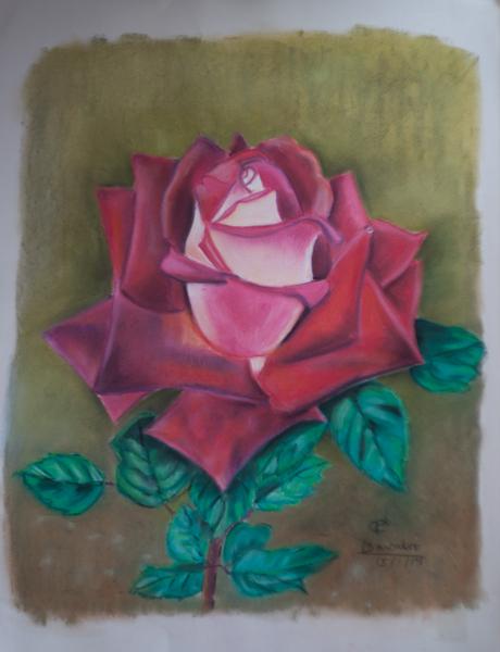 Rosa- Pastel / 50X65